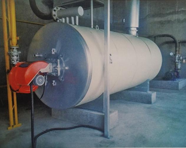 100万大卡燃气导热油炉在山东阳光新材料科技有限公司