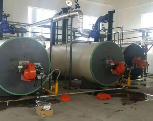 两台燃气导热油炉在山东巨业化工投入使用